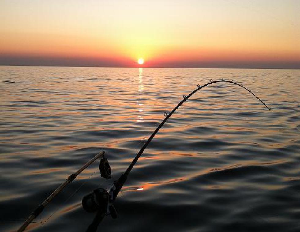 Sunset Fishing, Sunset Cruise
